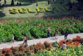 Taman Wisata Selecta Batu – Malang